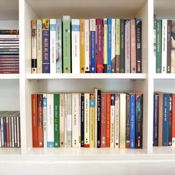 תכנון ועיצוב מדפי ספרים אייר שפירא